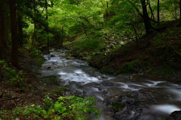 田母川、寂光の滝、AF-S Nikkor 24-70mm f/2.8E ED VRで撮影