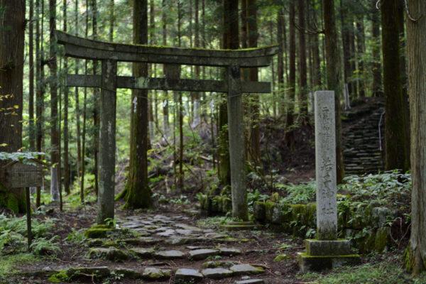 若子神社の鳥居、AF-S Nikkor 58mm f/1.4Gで撮影