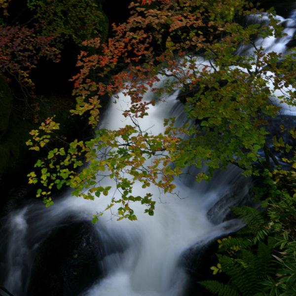 竜ぞの滝、AF-S Nikkor 24-70mm f/2.8E ED VRで撮影