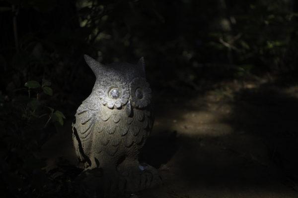 フクロウ(不苦労)の石像