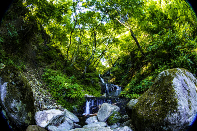 縁結びの滝、AF-S Fisheye NIKKOR 8-15mm f/3.5-4.5E EDで撮影