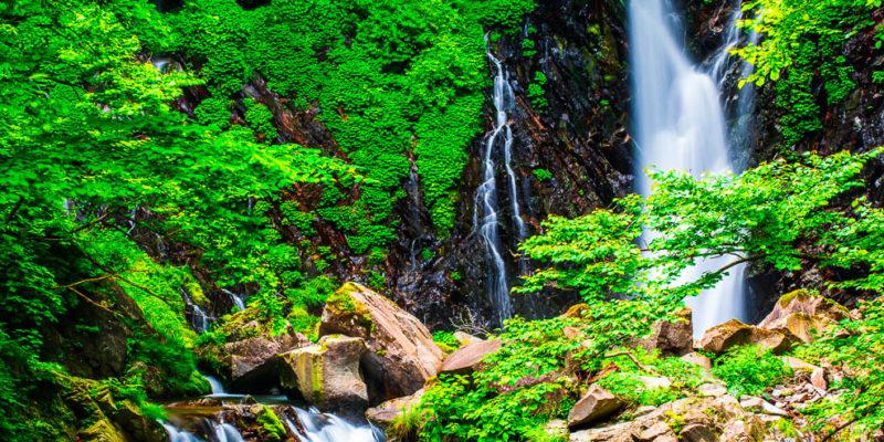 荒沢、裏見の滝
