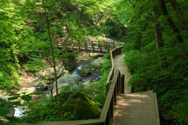 裏見の滝、観瀑台からの景色