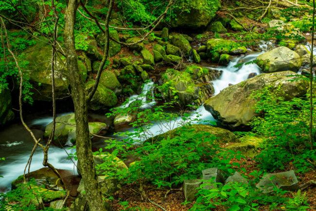 裏見の滝周辺の渓谷美