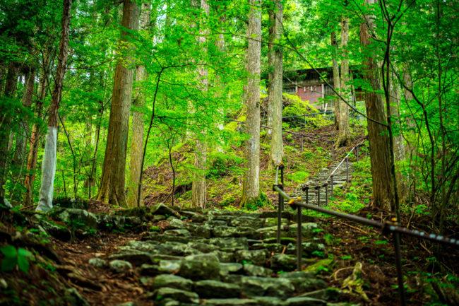 若子神社までの階段