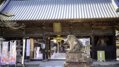 妻沼聖天山、仁王門と狛犬